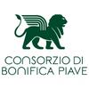 ProntoSeat Srl - Consorzio di Bonifica Piave  artwork